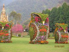 Owl Topiary....so stinkin awesome....
