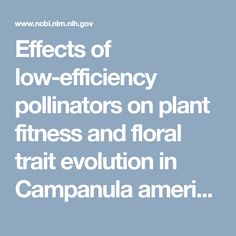 Effects of low-efficiency pollinators on plant fitness and floral trait evolution in Campanula americana (Campanulaceae).  - PubMed - NCBI