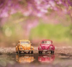 Find the perfect Photo Pin stock photos Miniature Photography, Cute Photography, Vw Bus, Volkswagen, Van Vw, Cute Pictures, Beautiful Pictures, Miniature Cars, Cute Little Things