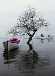 "500px / ""serenity"" (fog&lake) by e&e photography"