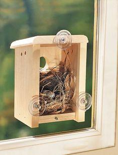 Window Nest Box #buildabirdhouse