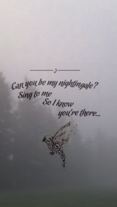 "it's ""Sing to me- I know you're there."" Not, ""Sing to me SO I know you're there."" I'm disappointed in this pinner. <3"