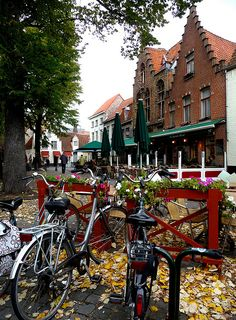 Fallen leaves in Bruges, Belgium