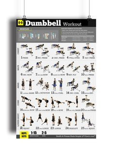 Dumbbell exercise poster for men to build strength, muscles and reducing body fat. Our workout poster will show you the absolute best dumbbell exercises to build the body you want. Increase your stren