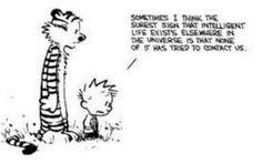 Réflexion sur la bêtise humaine...