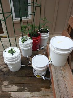 How to Build a 5 Gallon Self Wicking Tomato Watering Container by TheRustedGarden