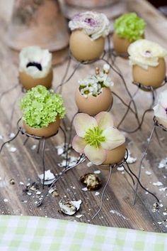 Met bloemen gevulde ei dopjes