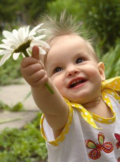 A flower for you...