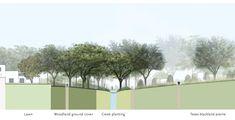 Recovered Moderism: A landscape matrix enriches a Dallas hacienda