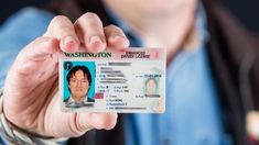 Leveraging years of experience, our team of highly-skilled and experienced professionals makes high-quality fake driver's license. Not to mention, our cards feature many security features just like the real thing. Driver License Online, Driver's License, Passport Online, Online Sites, School Projects, New Jersey, Things To Buy, Illinois, Are You The One