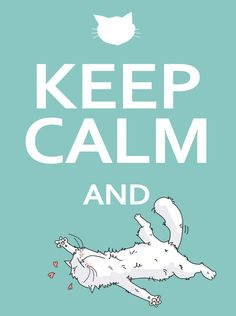 Keep calm and be a cat !