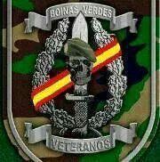 Veteranos Boinas Verdes