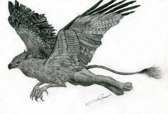 griffin art | Flying griffin by ~Chickenzaur on deviantART