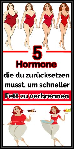 5 hormones you need to reset to burn fat faster Fitness Workouts, Easy Workouts, Yoga Fitness, Fitness Motivation, Workout Routines For Beginners, Body Weight Training, Abs Workout For Women, Fitness Nutrition, Physical Fitness