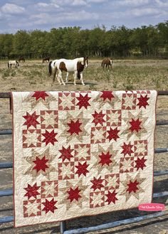 The layout with the quilt at the bottom and the horses on the top would make a lovely setup for a greeting card featuring the quilt