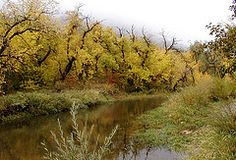 Fall Over the Creek at Lair 'o the Bear Park | Flickr - Photo Sharing!