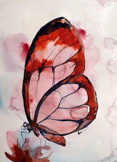 Butterfly watercolor painting original by AlisaAdamsoneArt on Etsy