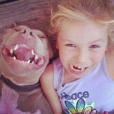 Pit Bulls on Instagram