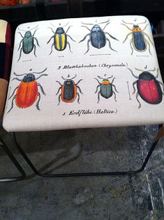 Kelly O'Neal's bug fabric bench for Design Legacy