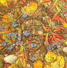 Bev Doolittle - New Magic I have this one . I need more Bev Doolittle Prints Native Art, Native American Art, American Artists, Native Indian, American Indians, Bev Doolittle Prints, Illusion Art, Illusion Paintings, Indigenous Art