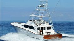 The Marlin Magic II is a 54' boat based out of Honokohau Harbour in Kona. Captained by Marlin Parker who has placed first in more than fourteen tournaments in the past 15 years and continues that streak to this day!