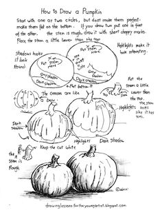 How to draw a pumpkin.   This free printable drawing worksheet, How to Draw a Pumpkin, is easy and with a few details can turn out v...
