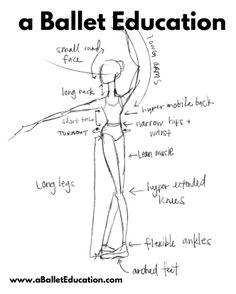 A Ballet Education Ballet Art, Ballet Class, Ballet Dancers, Ballet Basics, Ballet Quotes, Dance Quotes, Dance Terminology, Dance Terms, Ballet Steps