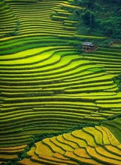 All these stunning photos were taken in China all over its vast land.    实拍中国天上人间, 尺度好大, 太美! 看醉了!                                      ...