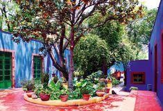 Jardín botánico - AD España, © Belén Imaz Recorremos la casa de Frida Kahlo con motivo de una gran exposición en Nueva York sobre su pasión por la botánica.