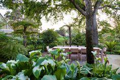 Designer: Carrie Latimer Style: Water Garden Type: Private Garden Area: Cape Town Garden Types, Private Garden, Water Garden, Carrie, South Africa, Plants, Plant, Water Gardens, Gardens