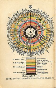 Outlines of Comparative Physiology by APS Museum, via Flickr