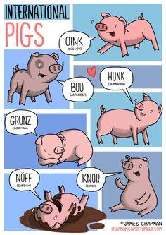 I versi degli animali in tutte le lingue - oink maiale
