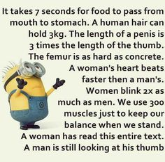 It takes only 7 seconds for food to pass from mouth stomach. The human hair can hold 3kg. The length of a penis is 3 times the length of the thumb...HeHeHe...