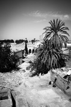 Marrakesh 2012  (C) Christophe Bocquet