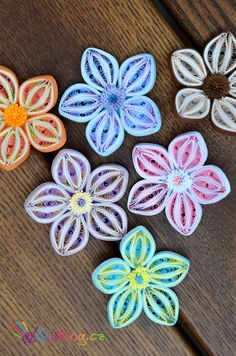 Quilling flowers                                                       …