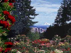 rose gardens portland