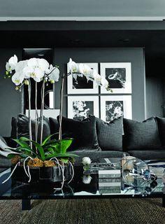 black #interior house design