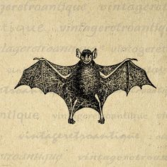 Printable Bat Graphic Download Antique Bat Illustration Image Digital Vintage Clip Art. High quality digital image graphic for making prints, transfers, tea towels, pillows, papercrafts, tote bags, and more great uses. Great for etsy products. This digital graphic is large and high quality, size 8½ x 11 inches. A Transparent background png version is included.