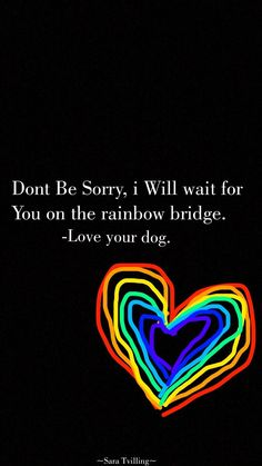 Don't be sorry, I will wait for you on the rainbow bridge. Love your dog. All Dogs, I Love Dogs, Puppy Love, Love You, Pass Away Quotes, Der Boxer, Dog Passed Away, Pet Loss Grief, Pet Remembrance