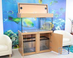 x x Marine Aquarium & Cabinet Aquarium Hood, Turtle Aquarium, Wall Aquarium, Aquarium Air Pump, Aquarium Setup, Home Aquarium, Aquarium Design, Marine Aquarium, Saltwater Aquarium