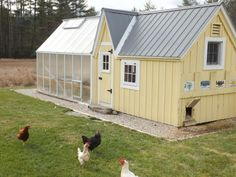 I like this green house attached to a charming coop. Most sites, though, would also need an enclosed, predator-prood pen.