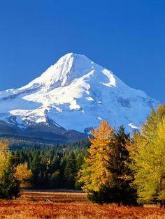 Mountain Landscape, Oregon Landscape, Wall Art Prints, Canvas Prints, Chicken Art, Autumn Scenery, Photo Tree, Beautiful Places To Visit, Mountain Range