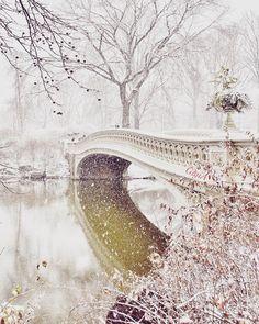 Bridge, Central Park by Gigi Altarejos Central Park, New York CityCentral Park, New York City New York Winter, Nyc, Anna Karenina, New York City Travel, Snowy Day, Winter Beauty, Winter Landscape, Winter Scenes, Belle Photo