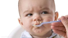 Babies who are spoon-fed puréed foods are at a higher risk for childhood obesity and are more likely to be fussy eaters. Fussy Eaters, Picky Eaters, Childhood Obesity, Early Childhood, Toddler Meals, Kids Meals, Toddler Food, Bon App, Learning To Say No