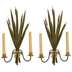 Pair of 1950s Naturalist Sconces Attributed to Maison Bagues 1