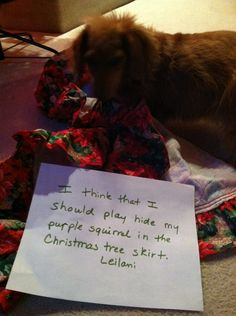 I think I should play hide my purple squirrel in the Christmas tree skirt. - Leilani