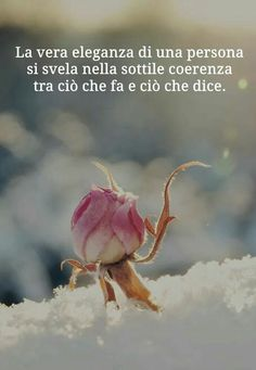 Peace Quotes, Wise Quotes, Spiritual Quotes, Words Quotes, Inspirational Quotes, Italian Quotes, Quotes About Everything, Healthy Words, Something To Remember