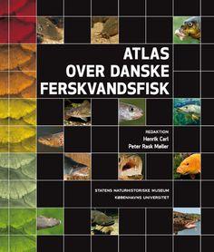 Atlas over danske ferskvandsfisk | Arnold Busck