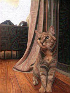 Now You Can Turn Your Photos Into Computerized Nightmares With 'Deep Dream'   Popular Science