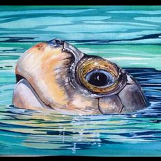 Watercolor Paintings Of Sea Animals Sea Turtle Painting, Sea Turtle Art, Turtle Love, Sea Turtles, Animal Paintings, Animal Drawings, Art Drawings, Painting & Drawing, Watercolor Paintings
